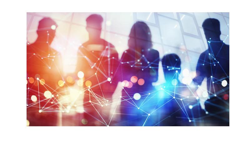 conseil organisation transition digitale